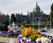 Parlament mit Blumen in Victoria, BC