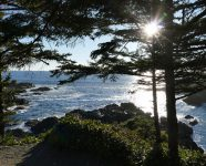 Wild Pacific Trail in Ucluelet, BC