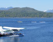 Kayaking im Tofino Inlet in Tofino, BC