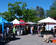 Salt Spring Island Farmers Market in Ganges, BC